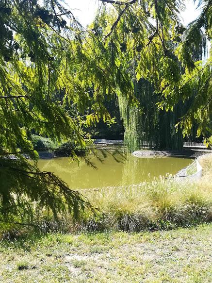 Dunavski park