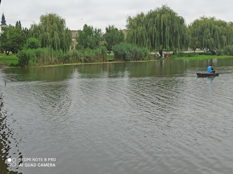 Srbobran reka
